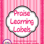 Learning Labels