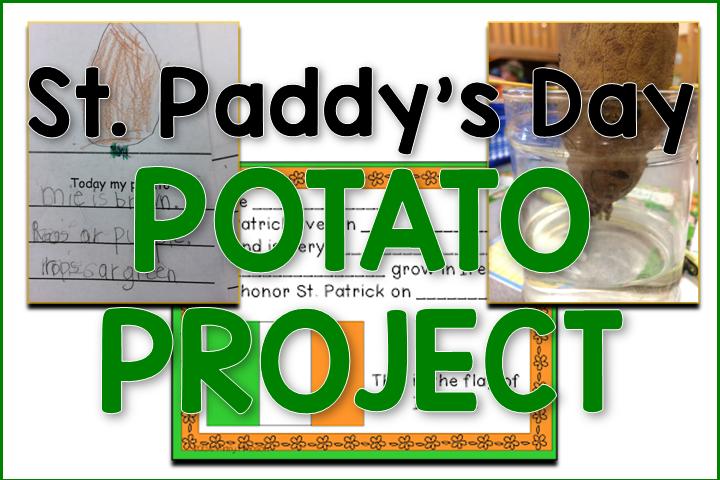 St. Patrick's Potato Project