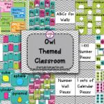 Owl Themed Classroom with a Freebie