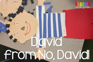 David from No, David books