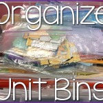Classroom Clean~Up {Organizing my Unit Bins}