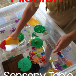 Mission: Sensory Table