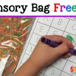 Sensory Bag Idea & Freebie