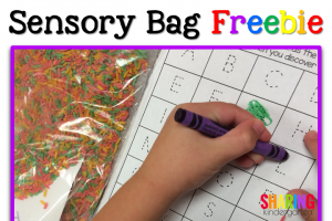 Sensory Bag idea and Freebie