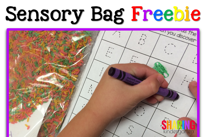Sensory Bag Idea & Freebie