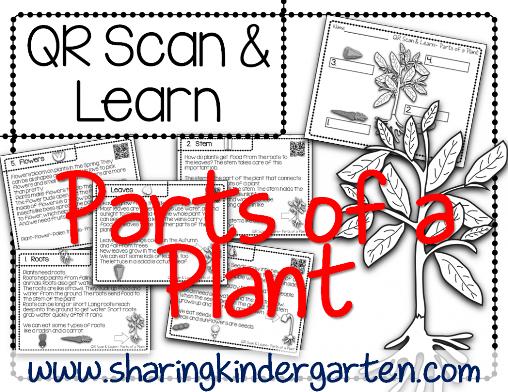 https://www.teacherspayteachers.com/Product/QR-Scan-Learn-Parts-of-a-Plant-1173382
