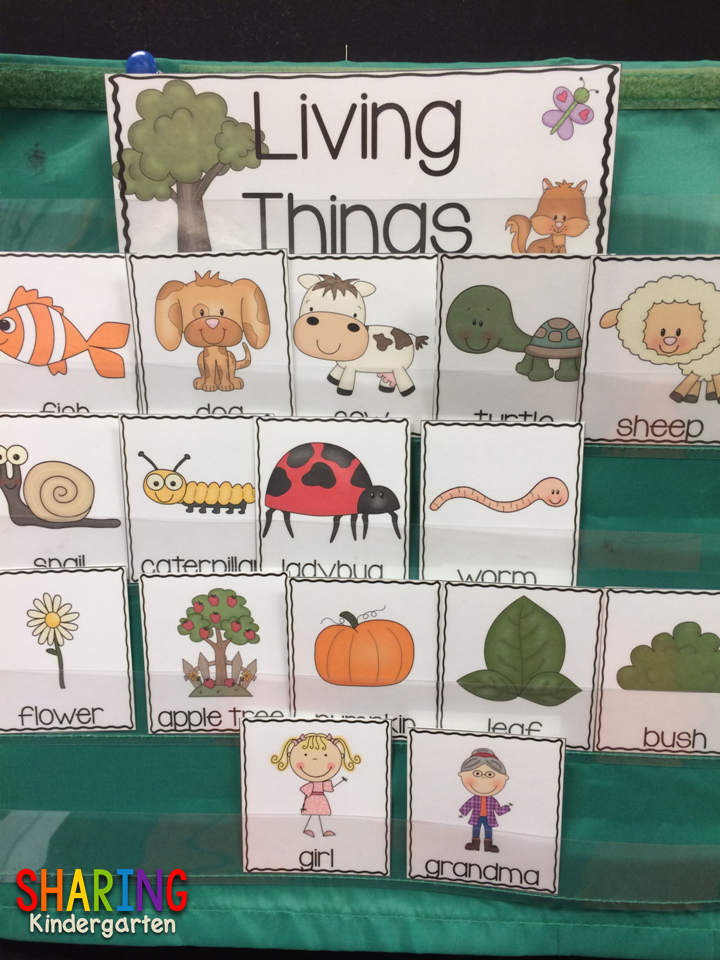 https://sharingkindergarten.com/product/living-and-nonliving-things/