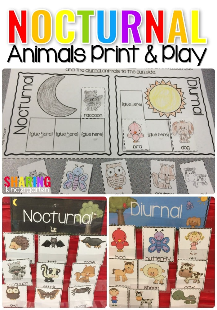 Nocturnal Print & Play Pack