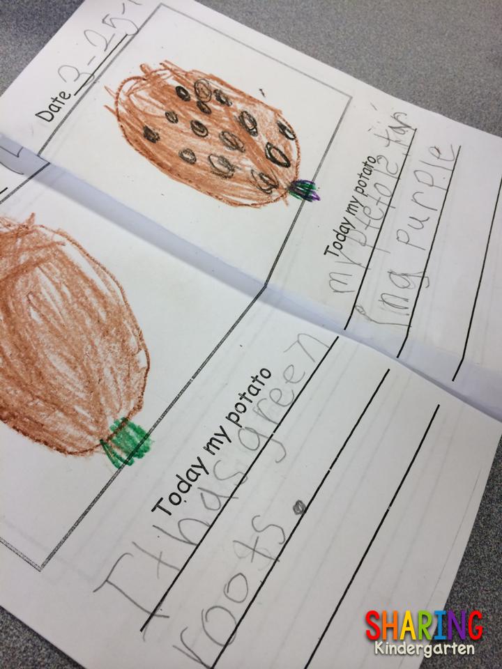 https://www.teacherspayteachers.com/Product/St-Patricks-Day-Paddy-Potato-Project-214119