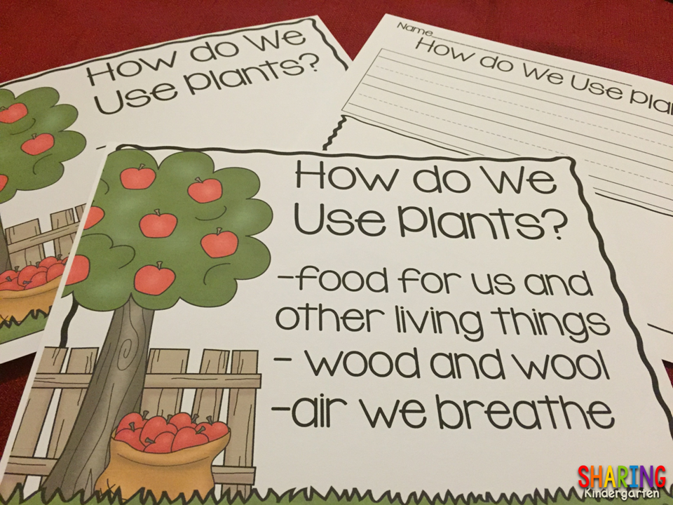 Plants print play pack sharing kindergarten for What do we use trees for