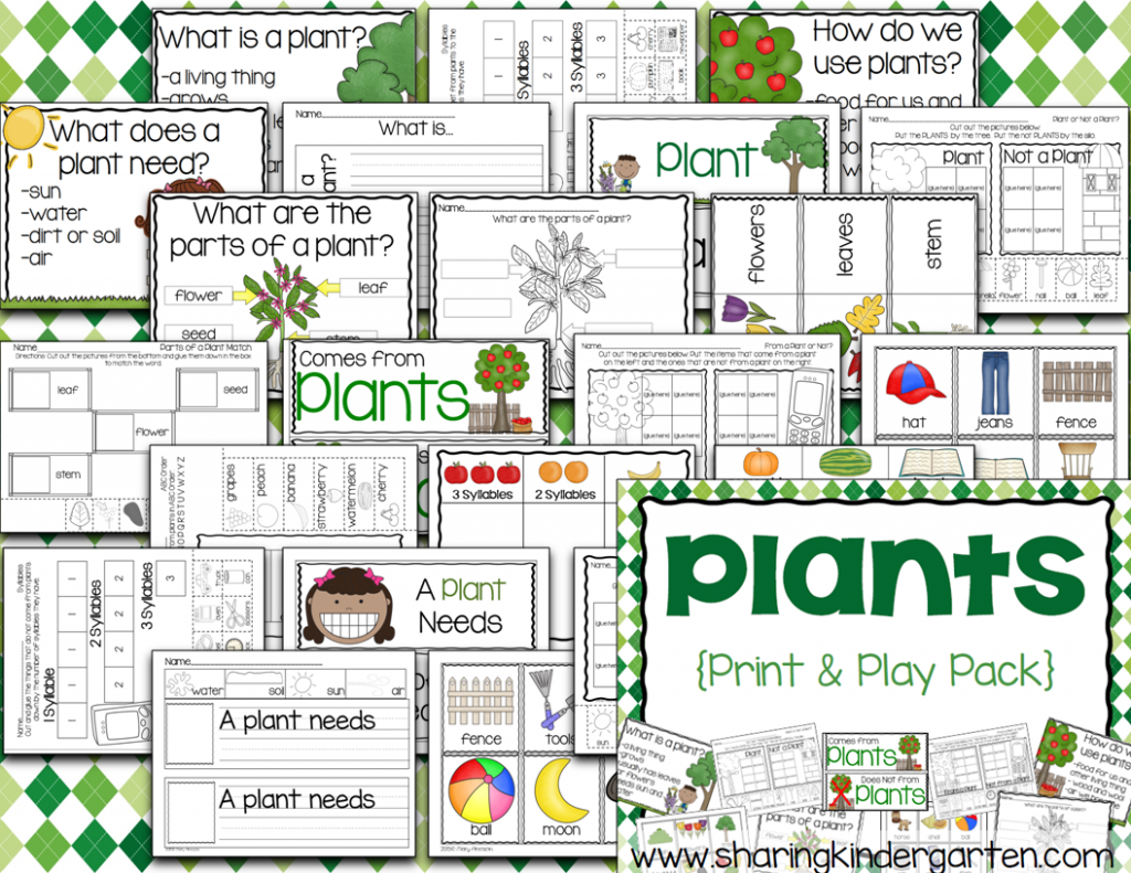 Plants Unit for Kindergarten