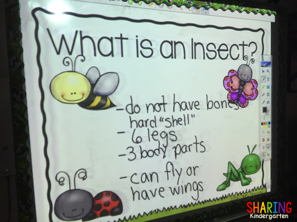 Charting insects