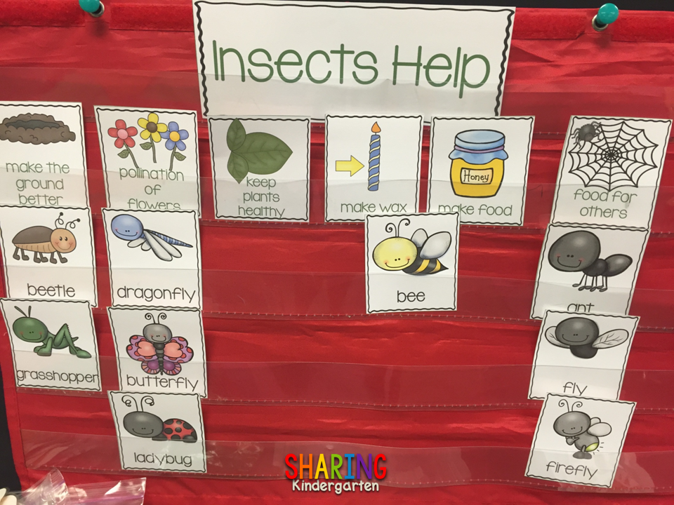 https://sharingkindergarten.com/product/insects/