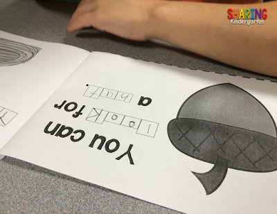 Letter Nn reader combines sight words with initial sounds!