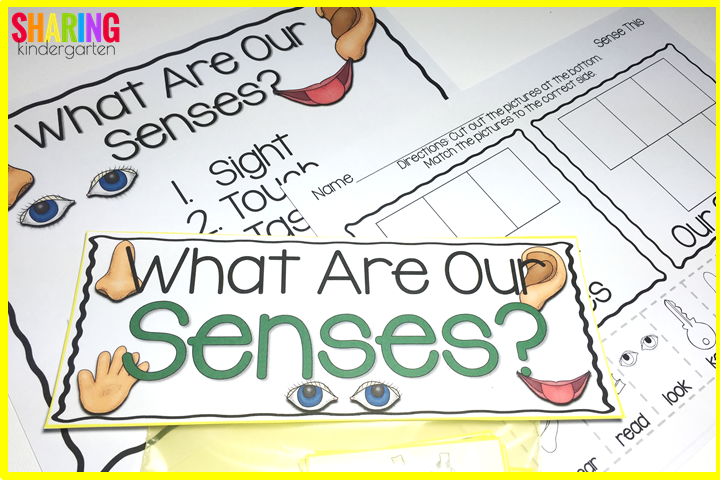 Breaking down our senses with charts, printables, and games!