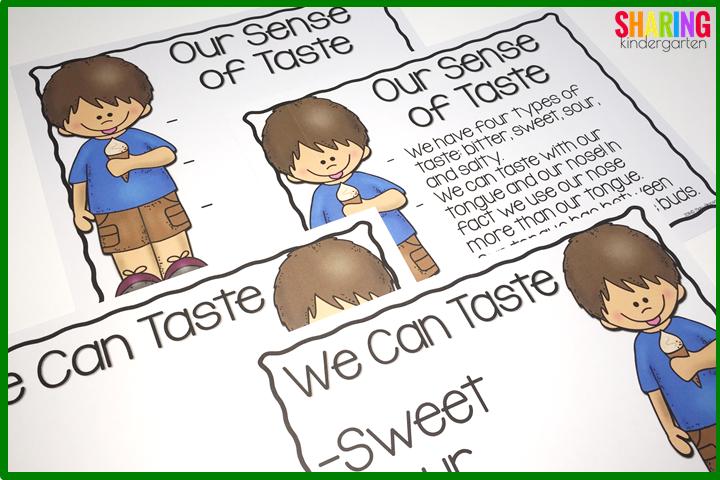 Our sense of taste charts