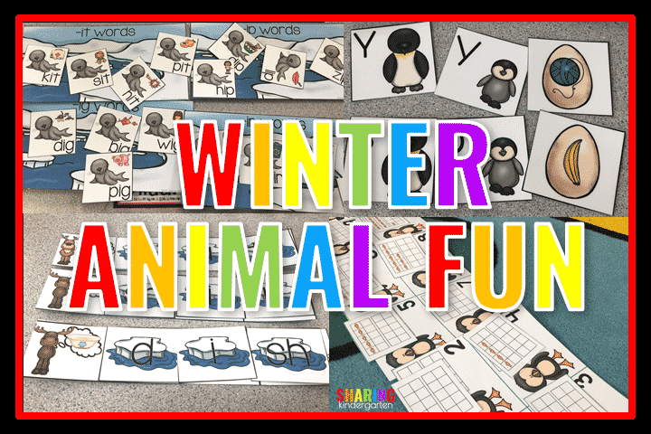 Winter Animal Fun