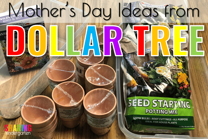 Mother's Day Gift Ideas from The Dollar Tree