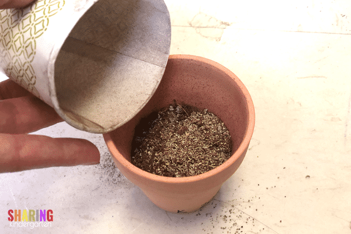 Add the seeds to the Mother's Day pots for Mother's Day gifts.