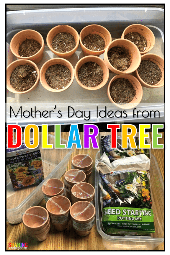 Mother's Day Ideas from Dollar Tree